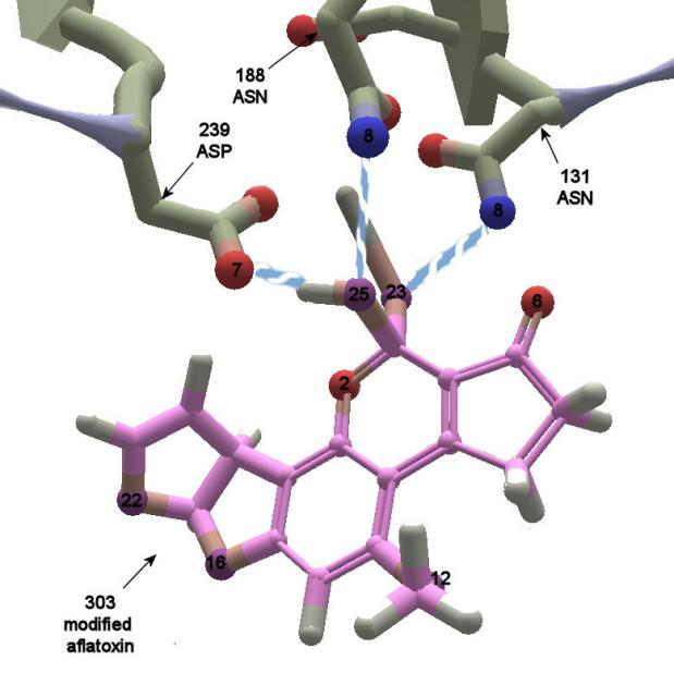 Aflatoxin bondable atoms: Hydrogen bond donors and acceptors for the ligand in puzzles 1440 and 1445, along with starting bonds.