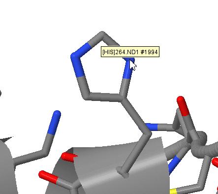 JMol atom display for protein