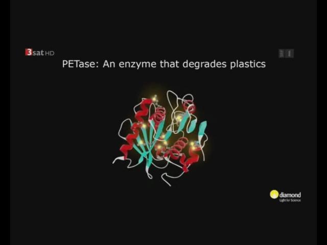 PETase - An Enzyme that degrades plastics